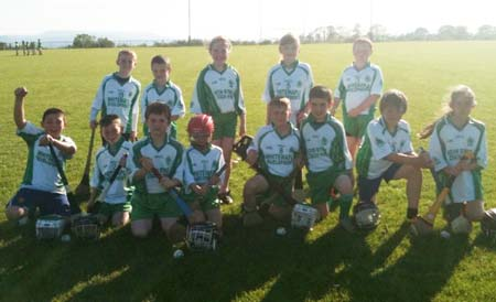 Players at the underage hurling blitz in Lisbellaw.