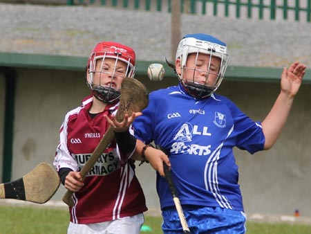 Action from the under 10 hurling blitz hosted by Aodh Ruadh.