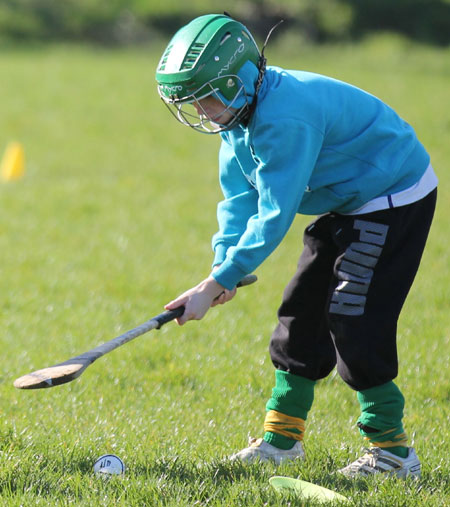 Scenes from the first underage hurling session of 2012.