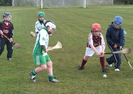 Action from the under 8 hurling blitz at Setanta.