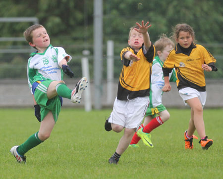 The Aodh Ruadh under 8 team which competed at the Ballyshannon blitz.