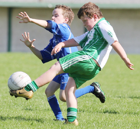 Action from th under 8 team blitz in Father Tierney Park.
