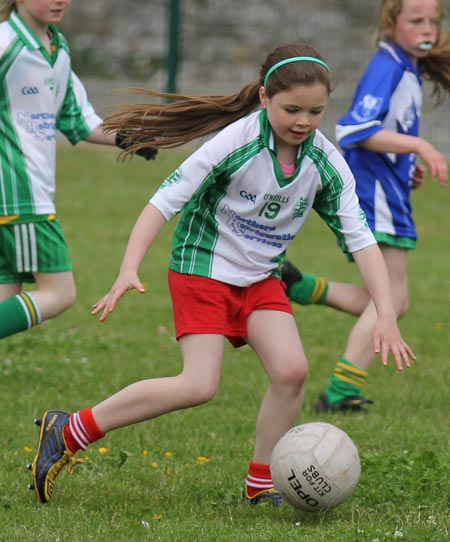 Action from the ladies under 10 and under 8 match between Aodh Ruadh and Four Masters.