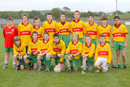 Kevin Keown's team which was runners-up in the 2008 Bakery Cup. Back row: Kevin Warnock, Pauric Patton, Thomas Gillespie, Eamon McGrath, PJ Gillespie, Alan Finan, Johnny Gettins, Matthew Gettins, Fergal Meehan. Front row: Michael Mannion, Patrick Dixon, Michael McNeely, Kieran Keown, Paddy Gillespie, Shane McGrath, Jack Dolan.