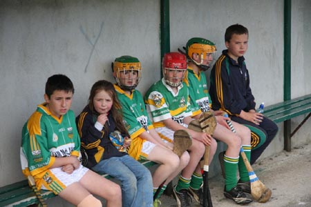 Action from the 2010 county F�ile hurling finals.