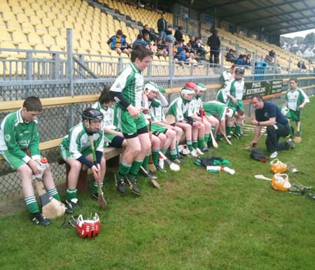 The Aodh Ruadh team which competed at the county F�ile finals.