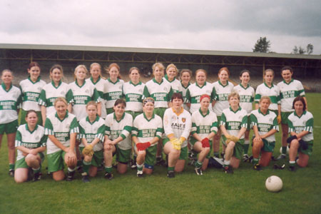 Aodh Ruadh Intermediate County Finalists, 2003.
