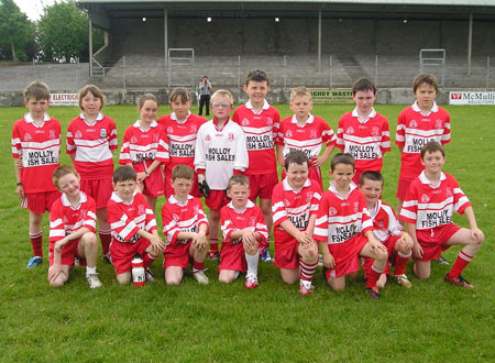 The Killybegs 'A' team which took part in the Michael Shannon Under 10 tournament in Ballyshannon last Saturday.
